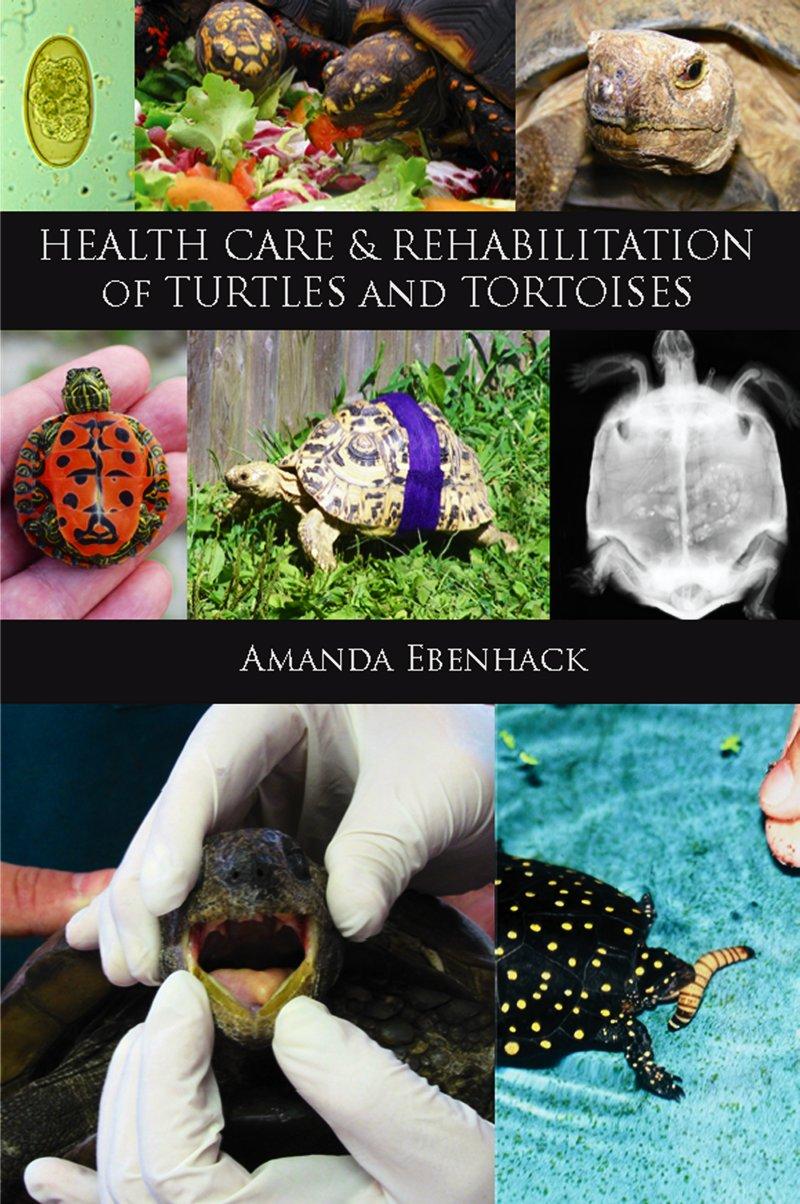 Health care and rehab of Turtles & Tortoises